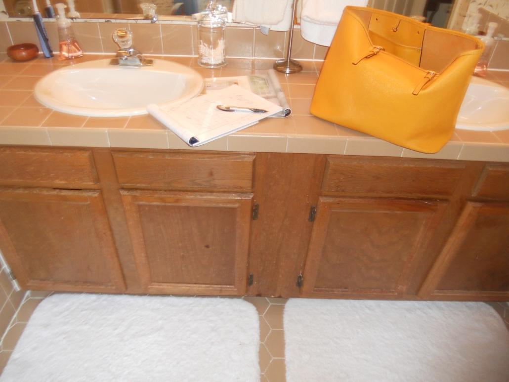 Burke Master Bath Remodel - before