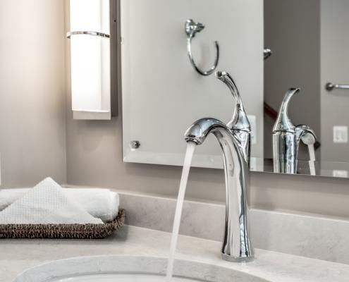 Lorton Master Bathroom - Faucet