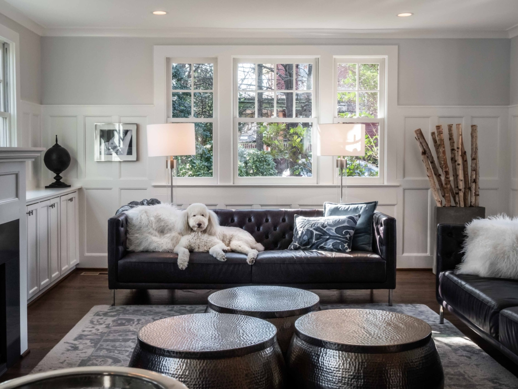 Alexandria, VA, interior remodel with Foster Remodeling, with dog on the couch