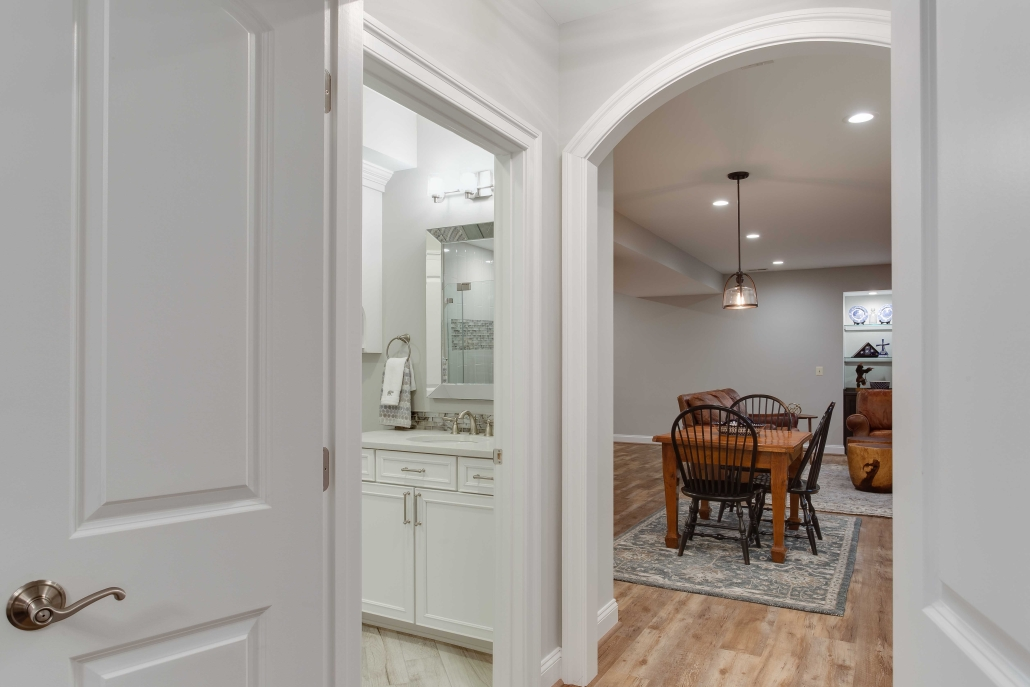Alexandria Basement remodel, added bathroom and living space with lighting, flooring and paint
