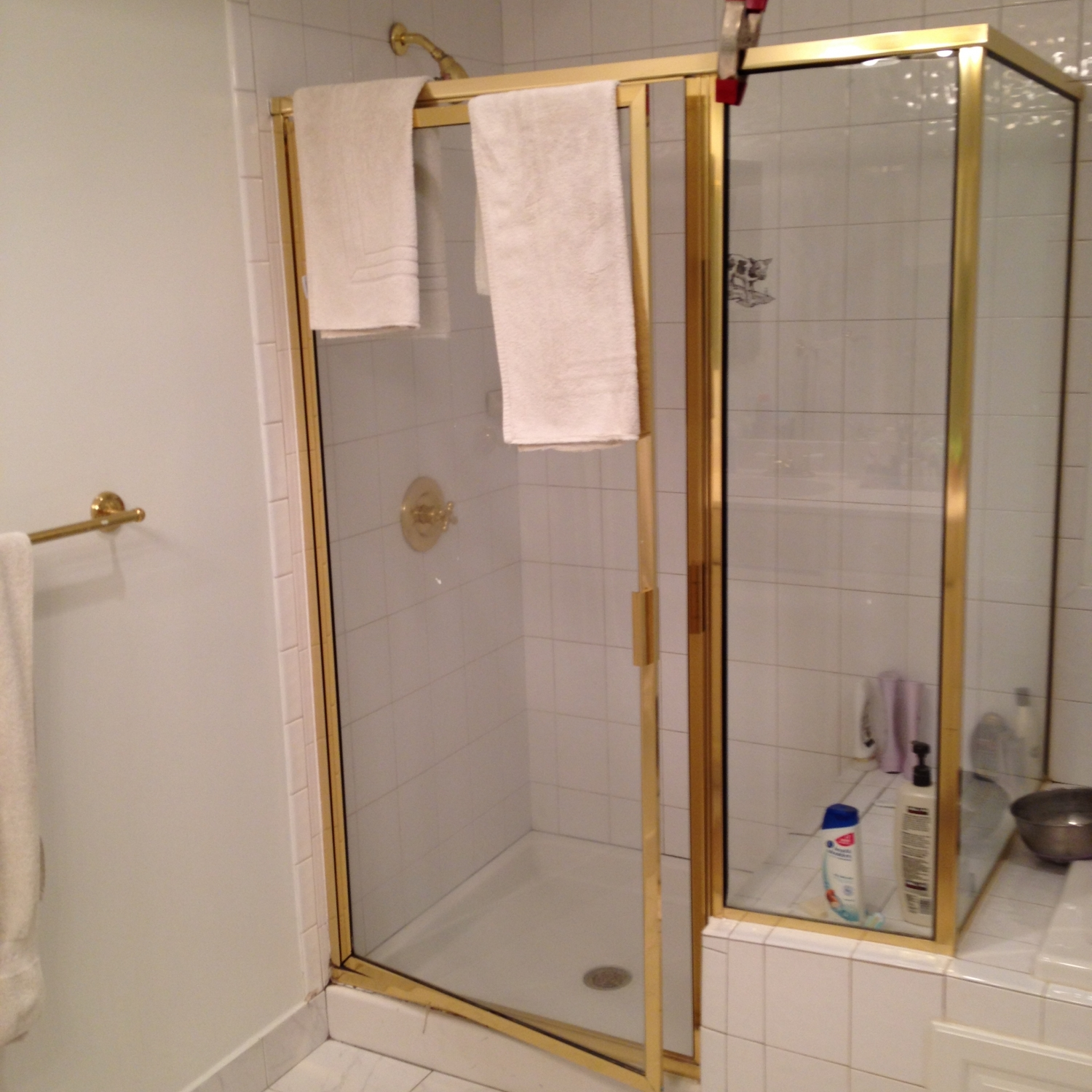 master bath remodel, Great Falls, VA, gold shower, before photo 1