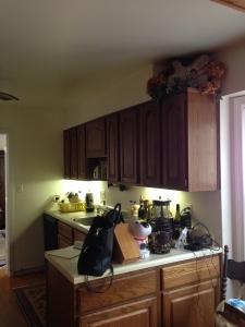 Vienna, VA dated kitchen, kitchen remodeling, before photo1